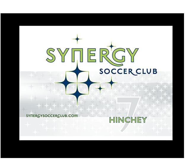 Synergy Yard Sign